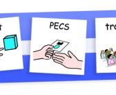 Phương pháp PECS
